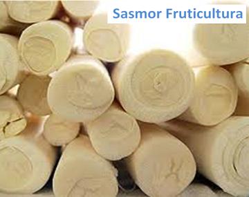 sasmor fruticultura